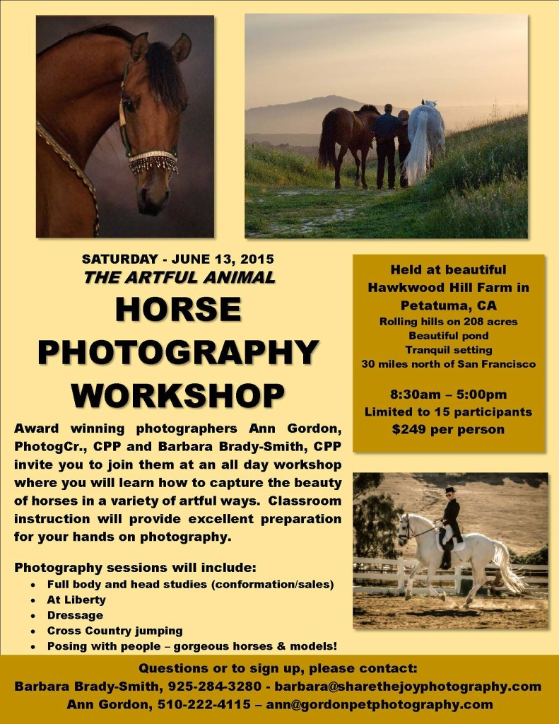 Horse Photography Workshop
